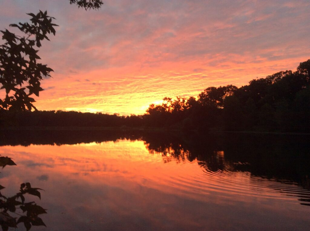 A lake surrounded by trees, Greenbelt Lake, reflects the pink, yellow, and purple views of the sunset