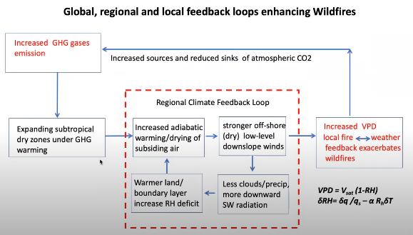 A graph detailing the global, regional, and local feedback loops enhancing wildfires