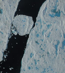 Sea ice in the summer