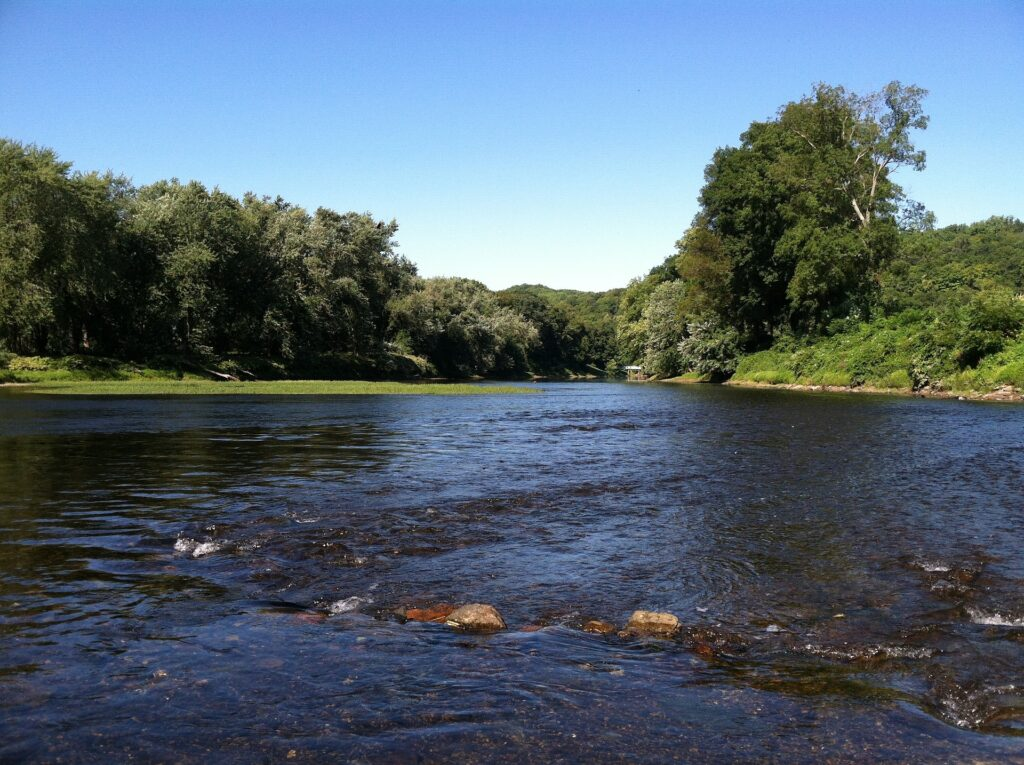 A wide freshwater river in between two forests, broken up by a stone path